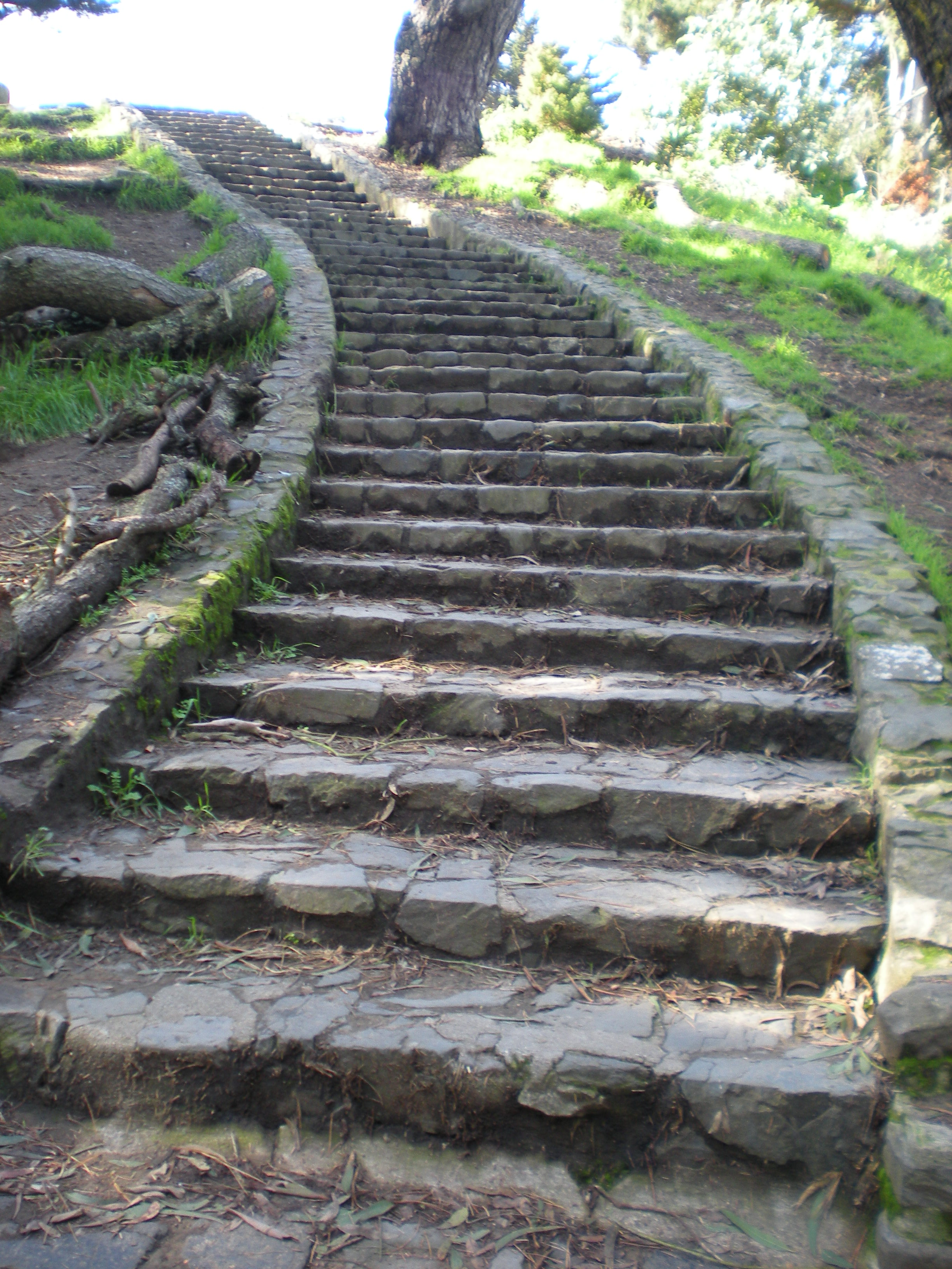 1000 images about walls and stairs on pinterest stone for Pictures of stone steps